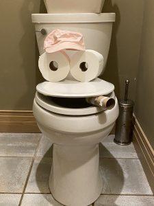 Tualetų lankytojai