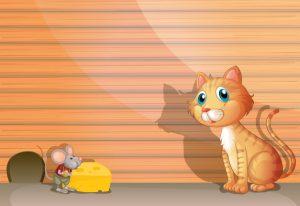 Katinas ir žiurkė