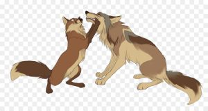 šuo ir vilkas