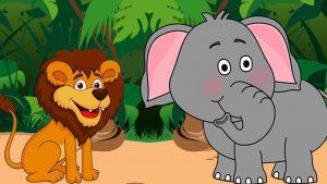 liūtas ir dramblys